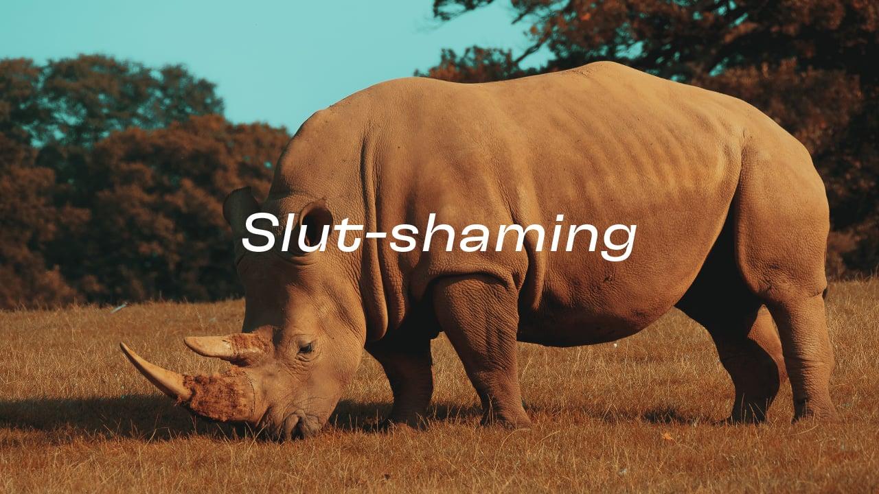 คนแรดผิดตรงไหน ทำไมต้อง slut-shaming : วันแรดโลก